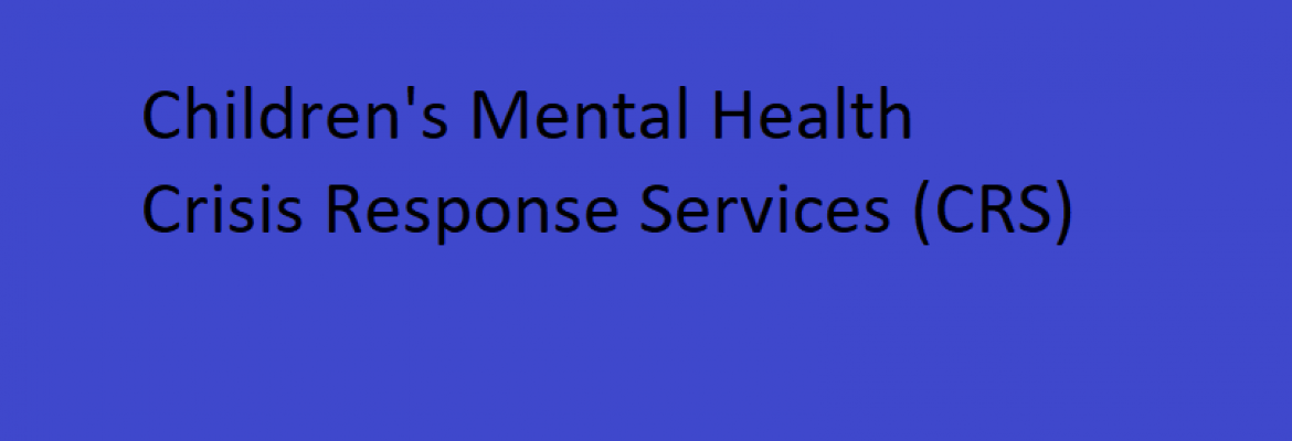 Counseling Services of Southern Minnesota, Inc., Mankato