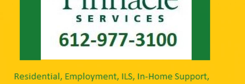 Pinnacle Services