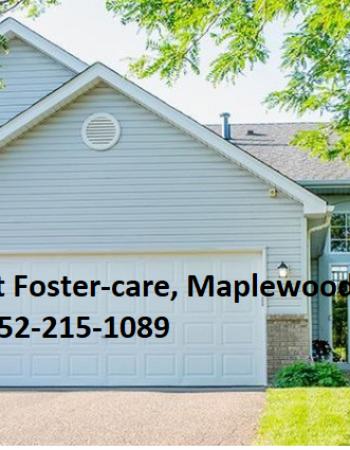 Usha Family Adult Foster-care, Maplewood